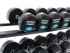 Muscle Power Ronde Dumbbellset 16 KG MP914  MP914-16KGSET